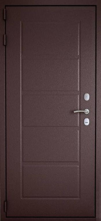 Уличные двери Гардиан 171