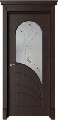Дверь Арена
